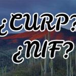 CURP O NIF