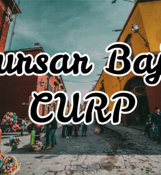 Cursar Baja Curp