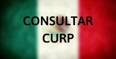 Consultar CURP